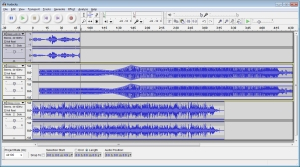 Audacity is a fantastic free audio editor for Mac or PC.