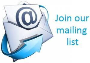 Creating a mailing list should be your top priority.