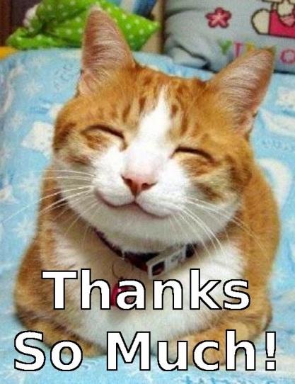 """Résultat de recherche d'images pour """"thank you cat"""""""